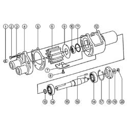 43210 Pump Replacement Parts image