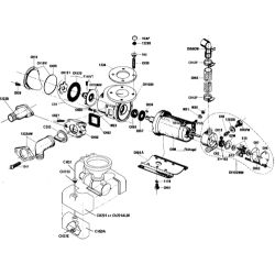 Crown Head - Lower Base Assembly image